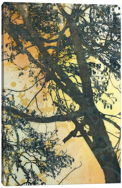 Bubbly Branches Canvas Art Print