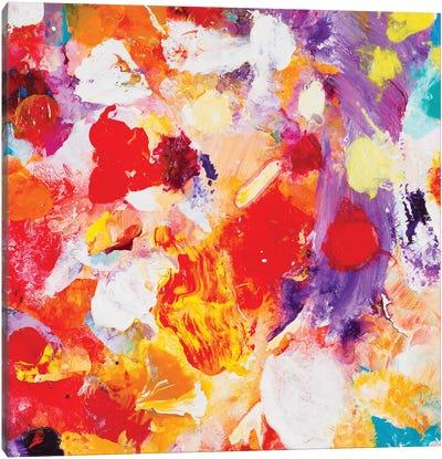 Beautiful Accidents III Canvas Art Print
