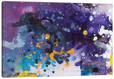 Beautiful Accidents VII Canvas Art Print