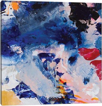 Beautiful Accidents XIII Canvas Art Print