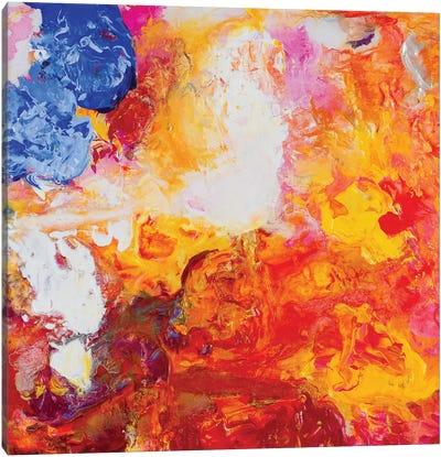 Beautiful Accidents XV Canvas Art Print