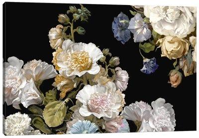 Splendid III Canvas Art Print
