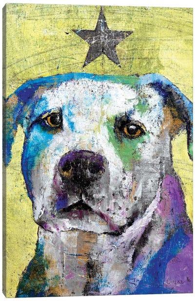 Pit Bull Terrier Canvas Print #MCR101