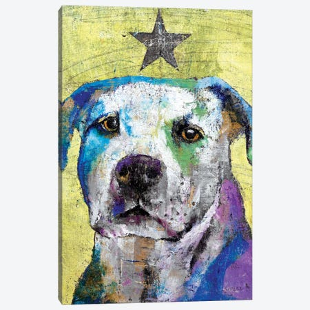 Pit Bull Terrier Canvas Print #MCR101} by Michael Creese Canvas Artwork