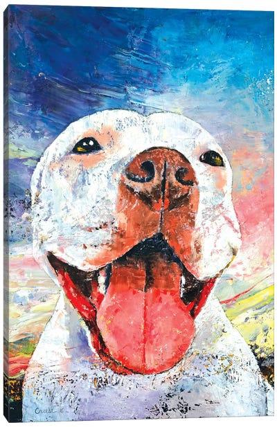 Pitbull Canvas Print #MCR102