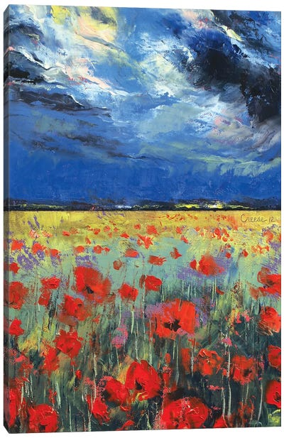 Poppies In Moonlight Canvas Print #MCR104