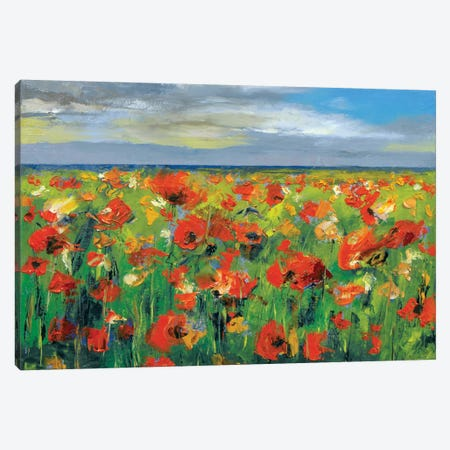 Poppy Field With Storm Clouds Canvas Print #MCR106} by Michael Creese Canvas Print