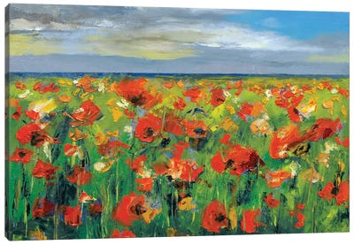 Poppy Field With Storm Clouds Canvas Print #MCR106