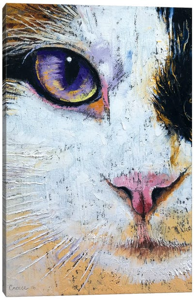 Ragdoll Cat Canvas Art Print