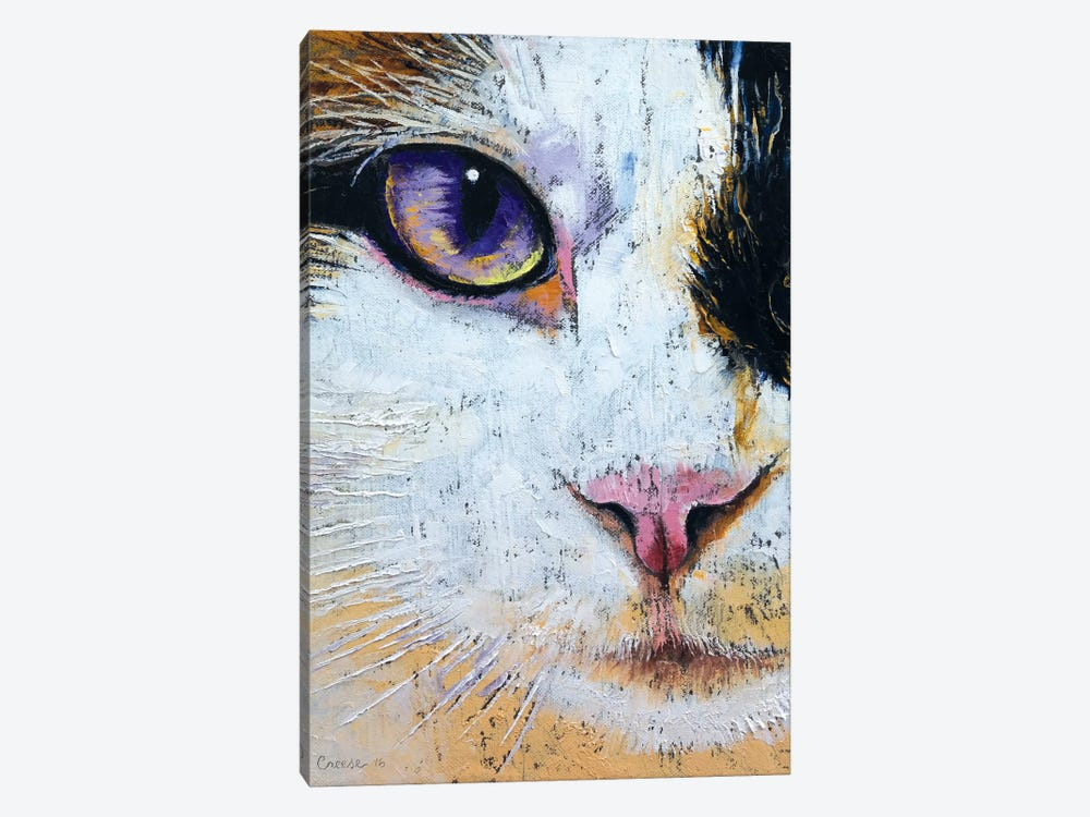 Ragdoll Cat by Michael Creese 1-piece Canvas Artwork