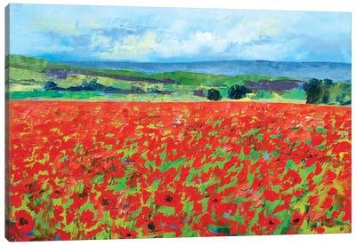 Red Oriental Poppies Canvas Print #MCR112