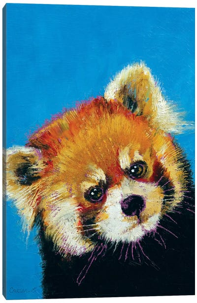 Red Panda Canvas Print #MCR113