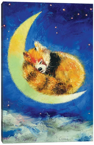 Red Panda Dreams Canvas Art Print