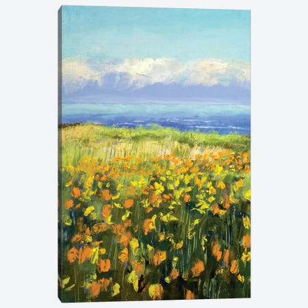 Seaside Poppies Canvas Print #MCR126} by Michael Creese Canvas Art Print