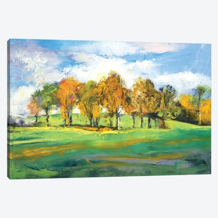Autumn Light Canvas Print #MCR12} by Michael Creese Art Print