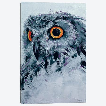 Spirit Owl Canvas Print #MCR131} by Michael Creese Art Print