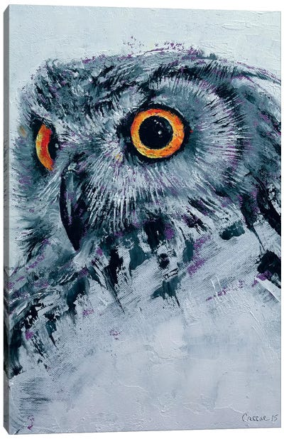 Spirit Owl Canvas Print #MCR131