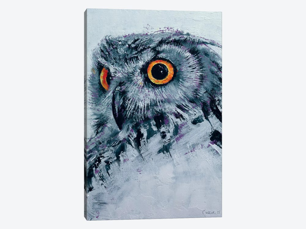 Spirit Owl by Michael Creese 1-piece Canvas Wall Art