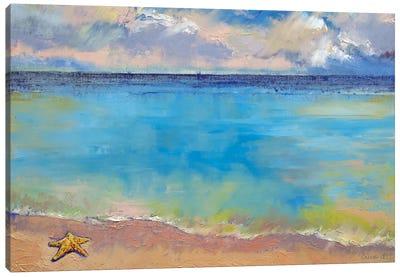 Starfish Canvas Art Print