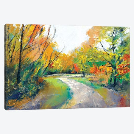 Autumn Woodland Path Canvas Print #MCR13} by Michael Creese Canvas Art Print