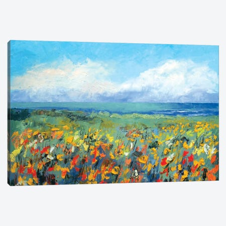 Wildflower Seascape Canvas Print #MCR147} by Michael Creese Canvas Print