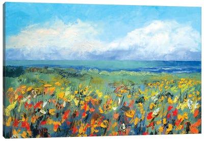 Wildflower Seascape Canvas Print #MCR147