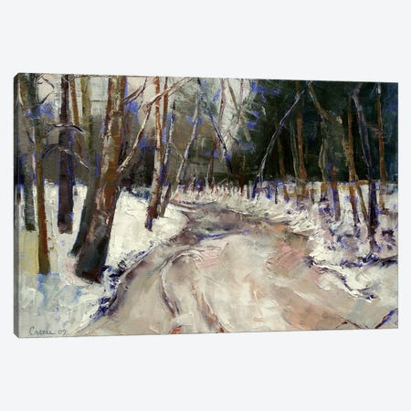 Winter Creek Canvas Print #MCR150} by Michael Creese Canvas Art Print