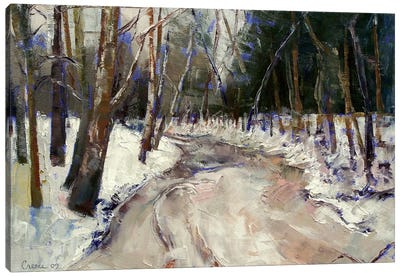 Winter Creek Canvas Art Print