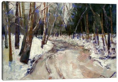 Winter Creek Canvas Print #MCR150