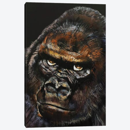Gorilla Canvas Print #MCR158} by Michael Creese Canvas Art Print