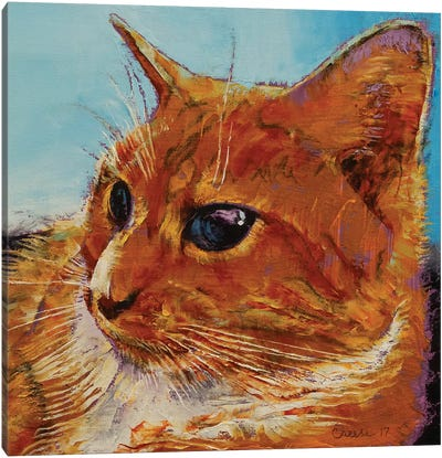 Orange Tabby Cat Canvas Art Print