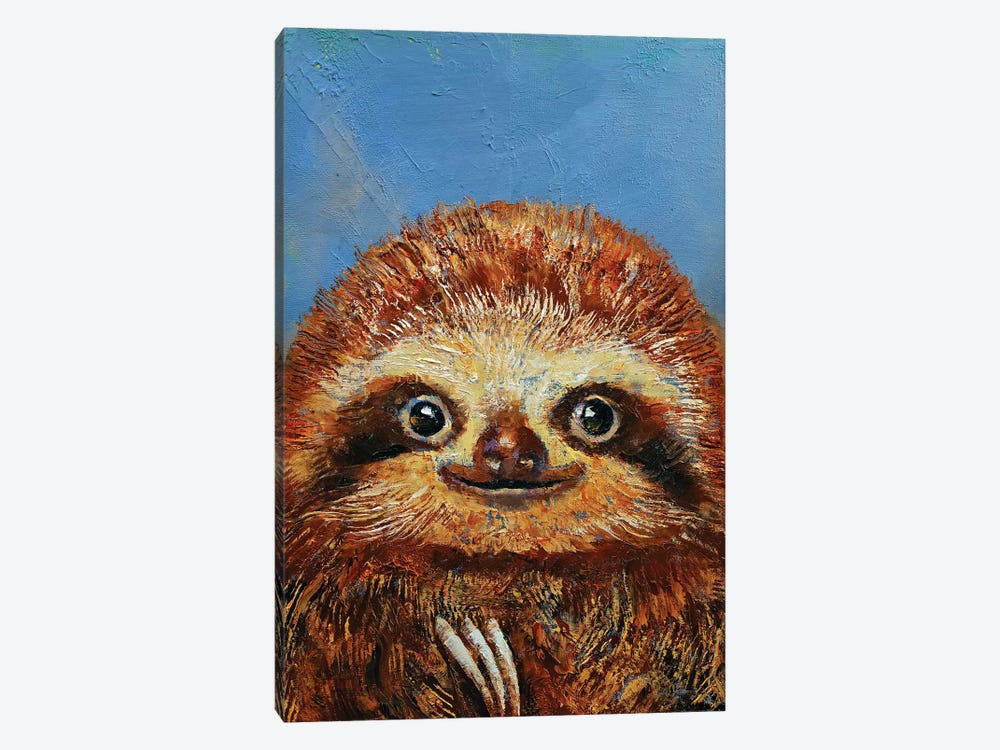 Baby Sloth  by Michael Creese 1-piece Canvas Wall Art