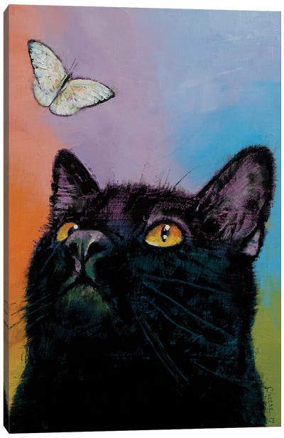 Black Cat Butterfly  Canvas Art Print