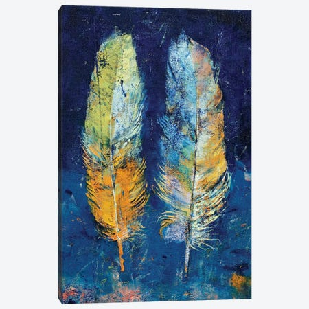 Feathers  Canvas Print #MCR177} by Michael Creese Canvas Wall Art