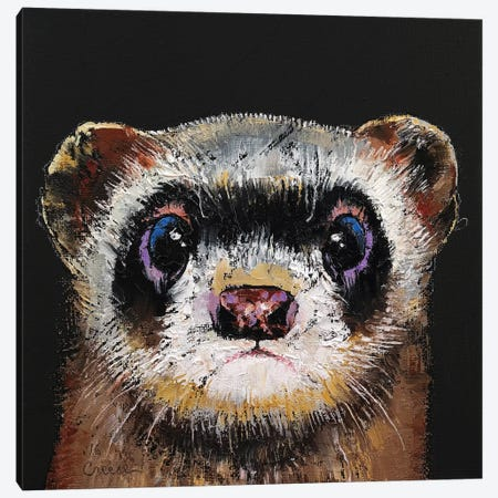 Ferret  Canvas Print #MCR178} by Michael Creese Canvas Art Print