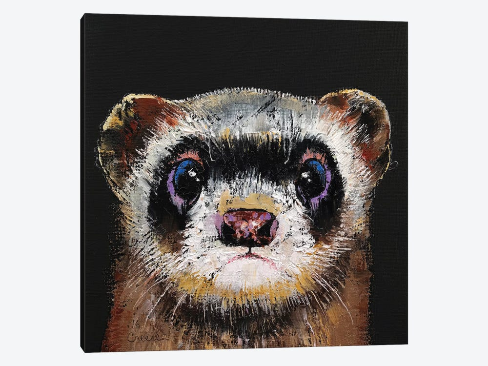 Ferret  by Michael Creese 1-piece Canvas Print
