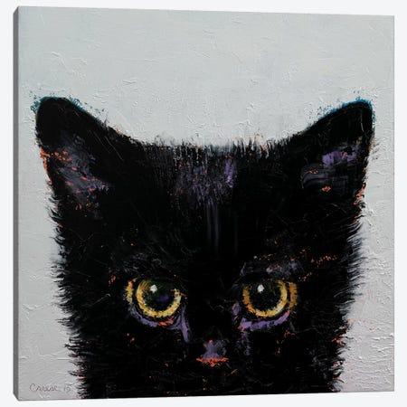 Black Kitten Canvas Print #MCR17} by Michael Creese Canvas Wall Art