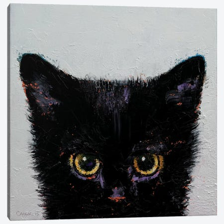 Black Kitten Canvas Print #MCR17} by Michael Creese Canvas Wall Art