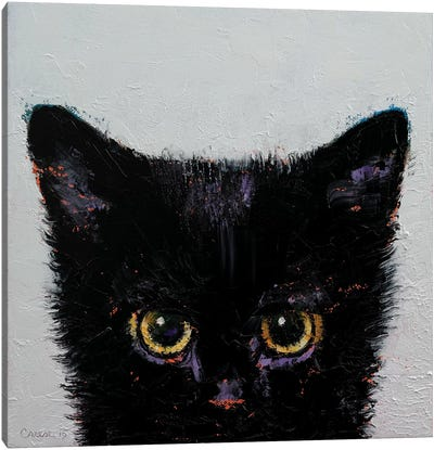 Black Kitten Canvas Art Print