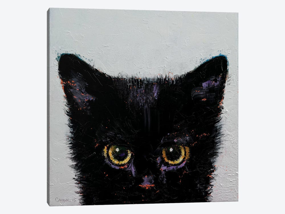 Black Kitten by Michael Creese 1-piece Canvas Print