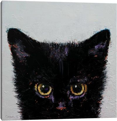 Black Kitten Canvas Art Print