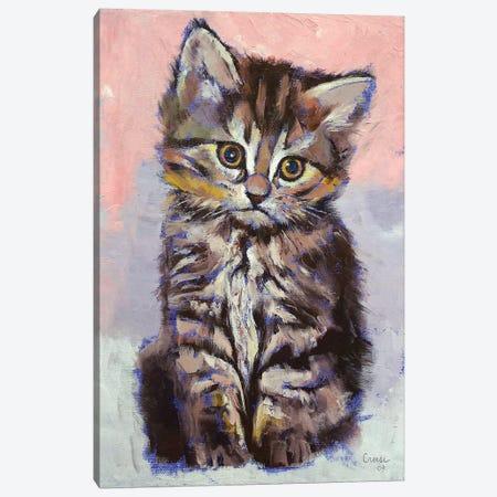 Kitten  3-Piece Canvas #MCR188} by Michael Creese Canvas Art