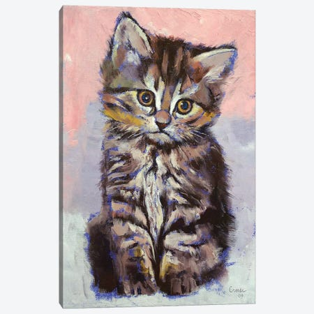 Kitten  Canvas Print #MCR188} by Michael Creese Canvas Art