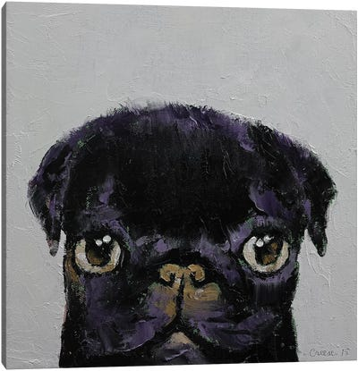 Black Pug Canvas Print #MCR18