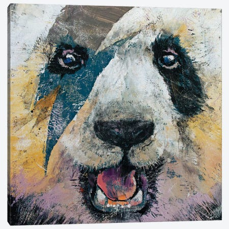 Panda Rock  Canvas Print #MCR194} by Michael Creese Canvas Art
