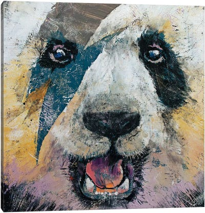 Panda Rock  Canvas Art Print