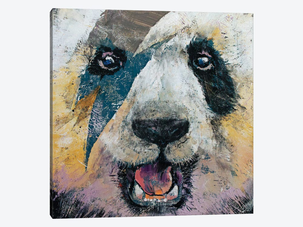 Panda Rock Canvas Artwork By Michael Creese Icanvas