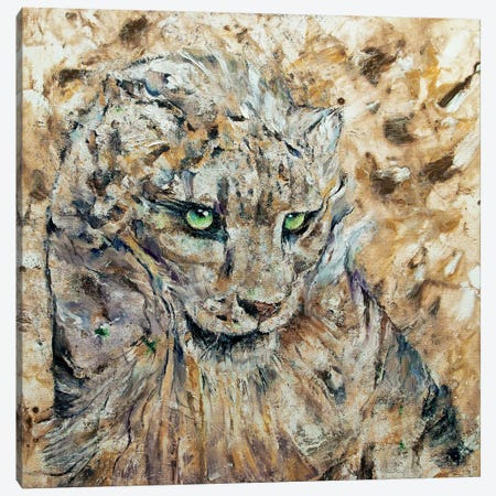 Snow Leopard  Canvas Print #MCR209} by Michael Creese Canvas Art Print