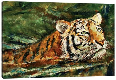 Swimming Tiger  Canvas Art Print