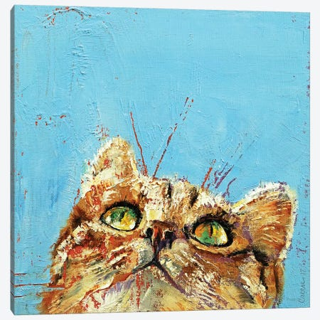 Tomcat  Canvas Print #MCR212} by Michael Creese Canvas Wall Art